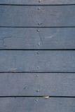 在Coldwater湖的走道 免版税图库摄影