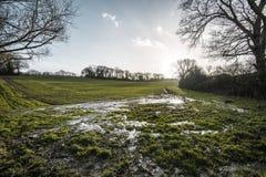 在Combe谷,东萨塞克斯郡的早期的春天被排泄的浸满水领域 图库摄影