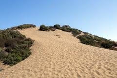 在Concon沙丘领域,智利,南美洲的美丽的沙丘 免版税库存照片