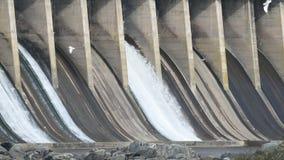 在Conowingo水坝马里兰的时间间隔开放溢洪道 股票视频
