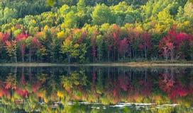 在Corry湖反射的10月颜色 图库摄影
