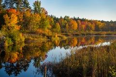 在Corry湖的10月日落 免版税库存照片