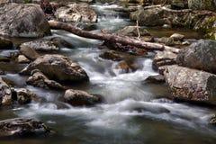 在Crabtree秋天附近的河急流,在乔治・华盛顿国家森林里在弗吉尼亚 免版税库存照片