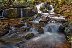 在Crabtree秋天附近的落下的小河,在乔治・华盛顿国家森林里在弗吉尼亚 图库摄影
