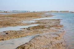 在Cunovo水坝的沉积在多瑙河 库存照片
