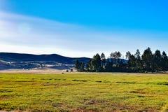 在Cuyamaca湖东部的草甸 免版税库存图片
