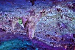 在Dachstein冰洞的Tripstone钟乳石在奥地利 库存照片