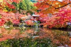 在daigoji寺庙的秋天 图库摄影