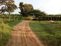 在dambulla,斯里兰卡的美好的农村农业地区 库存图片