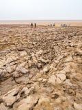 在Danakil消沉的湖Dallol, Ehtiopia附近环境美化 免版税图库摄影