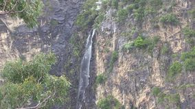 在Dangars峡谷的瀑布,在Armidale附近, NSW,澳大利亚 股票录像