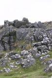 在Dartmoor国家公园的花岗岩露出 免版税库存照片