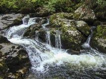 在Dartmoor的美丽的瀑布在德文郡,英国 库存图片