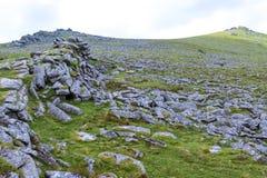 在Dartmoor的Belstone突岩 库存照片
