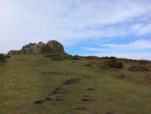 在Dartmoor的Haytor岩石 库存照片