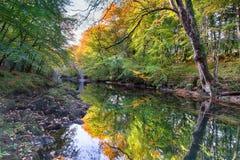 在Dartmoor的Holne桥梁 免版税库存照片