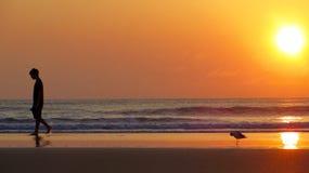 在Daytona海滩佛罗里达的日出步行 免版税库存图片