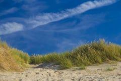在De Haan,比利时人反对蓝色地平线的北海海岸的沙丘 免版税图库摄影