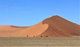 在Deadvlei纳米比亚的沙丘 免版税库存图片