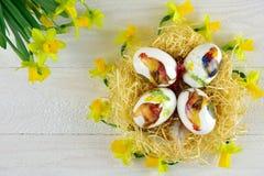 在decoupage样式的复活节彩蛋与水仙 免版税图库摄影
