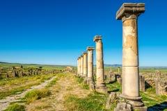 在Decumanus Maximus的看法在古城Volubilis -摩洛哥废墟  免版税库存照片