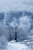 在Demerdzhi山的雪风暴 免版税库存照片
