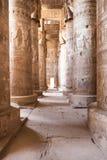 在dendera寺庙的专栏 免版税库存照片