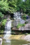 在dendrological的国民的瀑布 库存图片