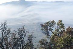 在Desa岩望的一个有雾的早晨,东爪哇省 免版税库存照片