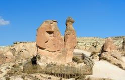 在Devrent谷的骆驼岩石在卡帕多细亚 火鸡 库存照片