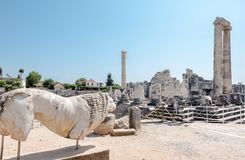 在Didyma在季季姆, Aydin,土耳其的阿波罗寺庙 库存图片