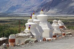 在Diskit修道院的Stupas Nubra谷的,拉达克,印度 免版税库存图片