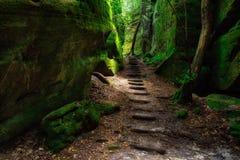在Dismals峡谷的峡谷足迹 免版税图库摄影