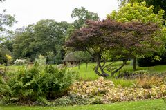 -在Diss西部在诺福克,英国-团结的Bressingham庭院 免版税图库摄影