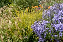 -在Diss西部在诺福克,英国-团结的Bressingham庭院 图库摄影
