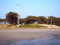在Diu的美丽的海滨 免版税库存照片