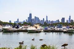 在Diversey港口之外的芝加哥地平线 免版税库存图片
