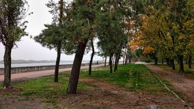 在Dnieper东欧附近的中央公园 库存照片