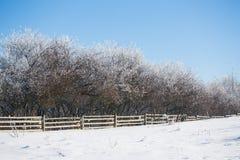 在dolnoslaskie,波兰的冬天风景 库存照片