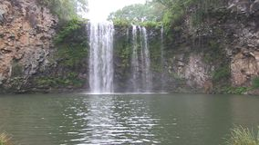 在Dorrigo NSW澳大利亚, Dangar瀑布附近 影视素材