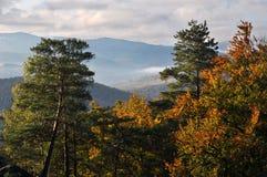 在Dovbush_13附近的秋天风景 免版税库存照片