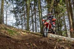 在Drapak圈地种族的摩托车越野赛车手 免版税库存照片