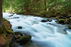 在Dubravska谷的狂放的山水在斯洛伐克 库存照片
