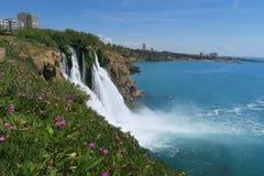 在Duden瀑布的花在安塔利亚,土耳其在春天 免版税库存照片