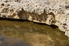 在Dwejra海湾岸的被腐蚀的石灰石在戈佐岛,马耳他 免版税库存图片