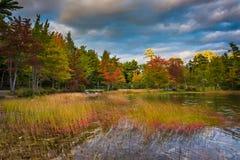 在Eagle湖的秋天颜色,在阿科底亚国家公园,缅因 库存图片