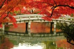 在Eikando寺庙的秋天叶子 免版税图库摄影