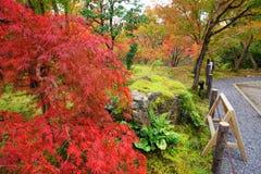 在Eikando寺庙,京都的秋叶 库存照片