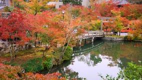 在Eikando寺庙,京都的秋天叶子 免版税库存照片