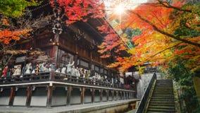 在Eikando Zenrinji寺庙的五颜六色的秋天在京都,日本 图库摄影